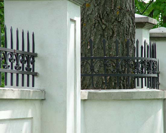Wrought iron fence 16