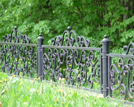 Wrought iron fence 8