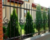 Wrought iron fences 34